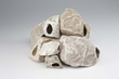 Underwater Galleries Ornament Cichlid Stone Bulk 8 Piece