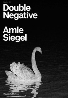 Amie Siegel: Double Negative