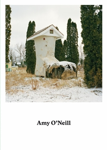 Amy O'Neill: Suburban Imagination