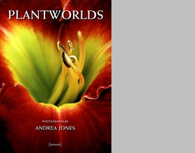 Andrea Jones: Plantworlds
