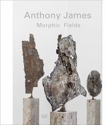 Anthony James: Morphic Fields