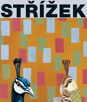 Antonín Strízek: Paintings