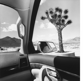 "Above: Lee Friedlander, ""California"" (2008), from the <I>America by Car</I> series."