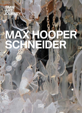 BMW Art Journey 4: Max Hooper Schneider