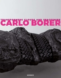 Carlo Borer: Transformers Clouds and Spaceships