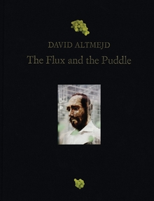 David Altmejd: The Flux and the Puddle