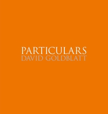 David Goldblatt: Particulars