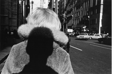 Double Elephant 1973–74, Lee Friedlander