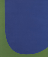 Ellsworth Kelly: Red Green Blue