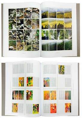 "Featured image is Gerhard Richter, ""10 Details,"" 1995/96, reproduced from <I>Gerhard Richter: Atlas, in Four Volumes</I>."