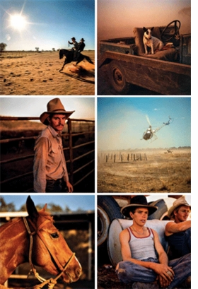 Featured images are reproduced from <I>Håkan Ludwigson: Balls and Bulldust</I>.