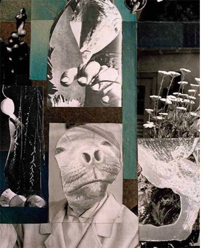 Hannah Höch: Life Portrait, A Collaged Autobiography