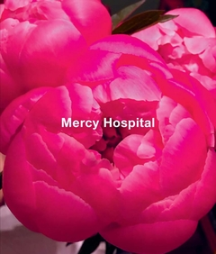 Ida Applebroog: Mercy Hospital