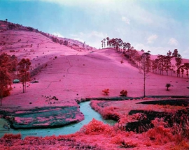 "Featured image, reproduced from <I>Infra: Photographs by Richard Mosse</I>, is ""Men of Good Fortune,"" 2010."