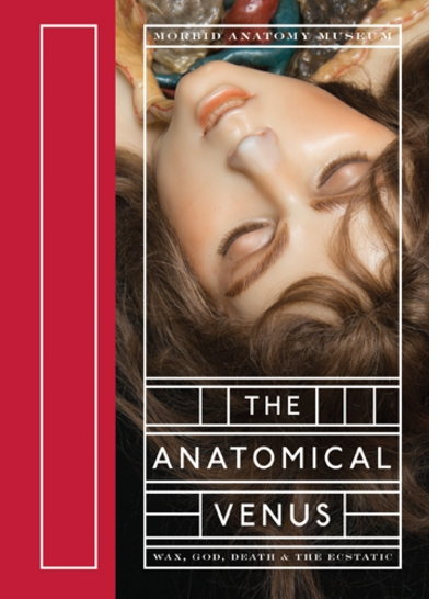 Joanna Ebenstein to Launch 'Anatomical Venus' at the Strand