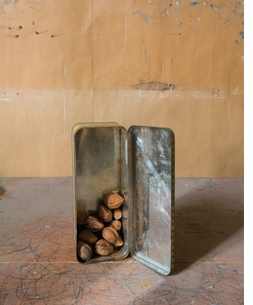 Featured image is reproduced from <I>Joel Meyerowitz: Morandi's Objects</I>.