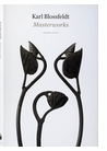 Karl Blossfeldt: Masterworks, An Artbook Review