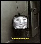 Lee Friedlander: The Little Screens