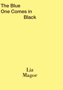 Liz Magor: The Blue One Comes in Black