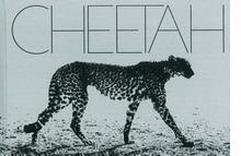 Mark Segal: Cheetah