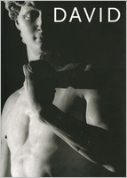 Michelangelo's David: From Symbol to Myth