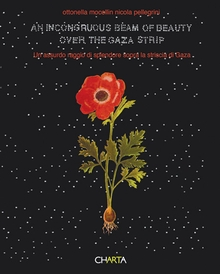 Ottonella Mocellin & Nicola Pellegrini: An Incongruous Beam of Beauty Over the Gaza Strip