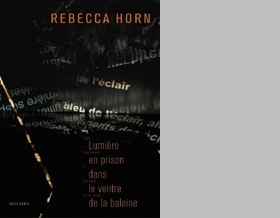 Rebecca Horn: Light Imprisoned In The Belly Of The Whale