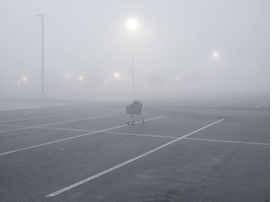 "Featured image, reproduced from <I>Petrochemical America</I>, is Richard Misrach's 2010 photograph, ""Shopping Cart, T Plate 48 anger Factory Outlet Center, I-10, Gonzales, Louisiana."""
