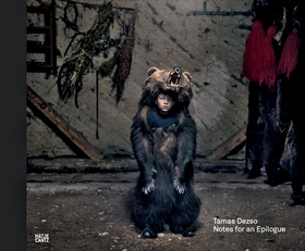 Tamas Dezso: Notes for an Epilogue