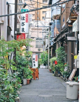 "Reproduced from the chapter ""Diversity"" in <I>The Vertical Village</I>, the featured image, above, is captioned ""The Tsukishima area of Tokyo derives its identity through difference. The urban structure is composed of small plots, providing a scale that encourages diversity of style and of use."""