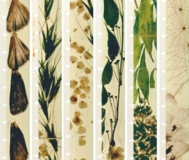 "The Walker Art Center presents ""Metaphors on Vision"" by Stan Brakhage"