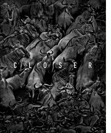 Tomasz Gudzowaty: Closer