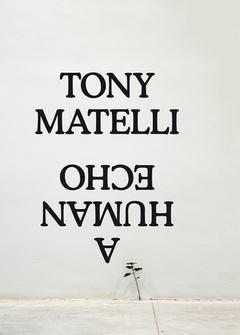 Tony Matelli: A Human Echo