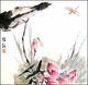 Chinese Brush Painting -  Dragonfly & Lotus #18