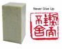 Chinese Seal Stamp - Never Give Up  #31