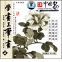 Learn Chinese Painting - How to Paint Flowers in GongBi Style (VCD)