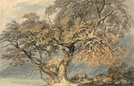 A Great Tree painting reproduction, J.M.W. Turner