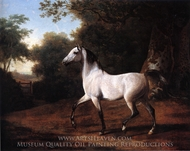 A Grey Arab Stallion in a Wooded Landscape painting reproduction, Jacques-Laurent Agasse