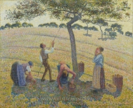 Apple Harvest at Eragny painting reproduction, Camille Pissarro