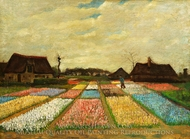 Bulb Fields painting reproduction, Vincent Van Gogh