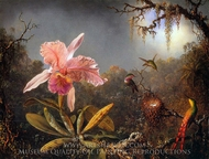 Cattleya Orchid and Three Brazilian Hummingbirds painting reproduction, Martin Johnson Heade