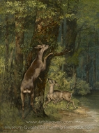Deer in the Forest painting reproduction, Gustave Courbet