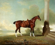 Favorite Chestnut Hunter of Lady Frances Stephens (Lady Frances Pierrepont) painting reproduction, Benjamin Marshall