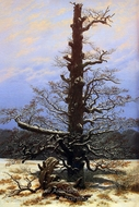 Oak Tree in Snow painting reproduction, Caspar David Friedrich