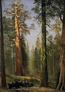 The Grizzly Giant Sequoia, Mariposa Grove, California painting reproduction, Albert Bierstadt