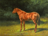 The Red Sorrel painting reproduction, Rosa Bonheur