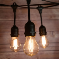 10 Suspended Socket Vintage Outdoor Commercial String Light Set, PS50 Edison Light Bulbs, 21 FT Black Cord w/ E26, 11W, Weatherproof