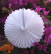 "12"" White Tissue Paper Flower Rosette Fan Decoration (6 PACK)"