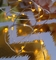 20 Amber LED Micro Fairy String Lights, Wire (6ft, Battery Operated)