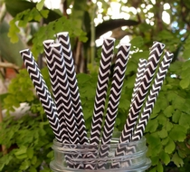 Black Chevron Patterned Party Paper Straws (12 PACK)